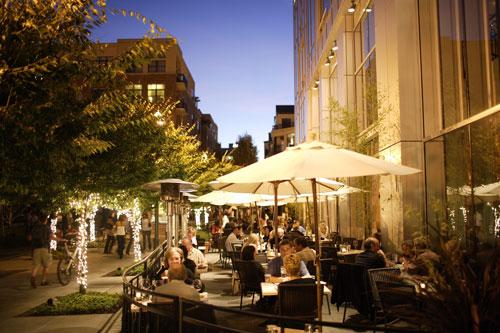 Fenouil-patio